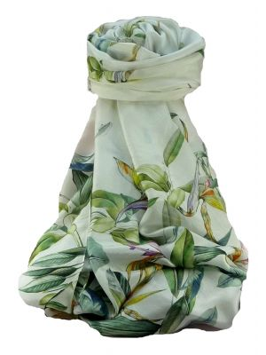 Supersized Handloom Saurshatra Silk Scarf or Stole Bird of Paradise Pattern by Pashmina & Silk