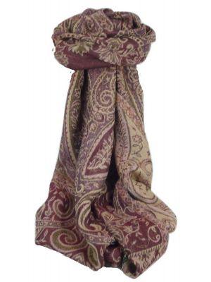 Muffler Scarf 4683 in Fine Pashmina Wool Heritage Range by Pashmina & Silk