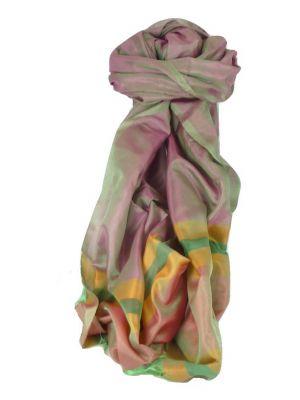 Varanasi Border Prime Silk Long Scarf Heritage Rajagopal 254 by Pashmina & Silk